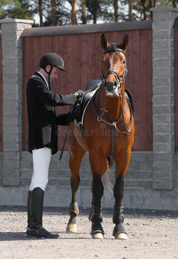 Koński Mężczyzna Fotografia Stock