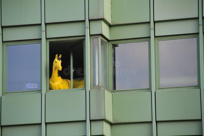 koński okno obraz stock