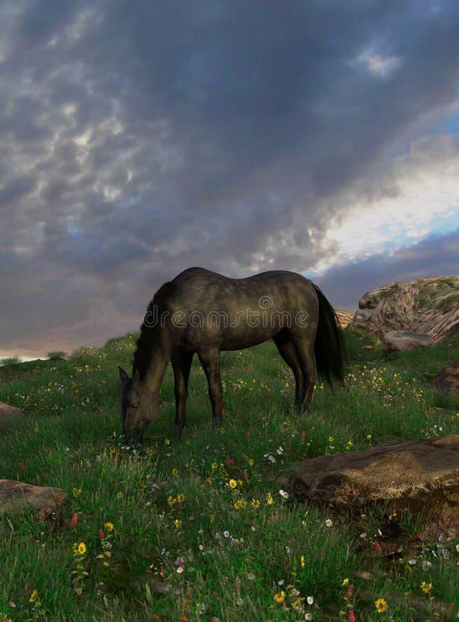 Koński pasanie na wiosny trawie ilustracja wektor