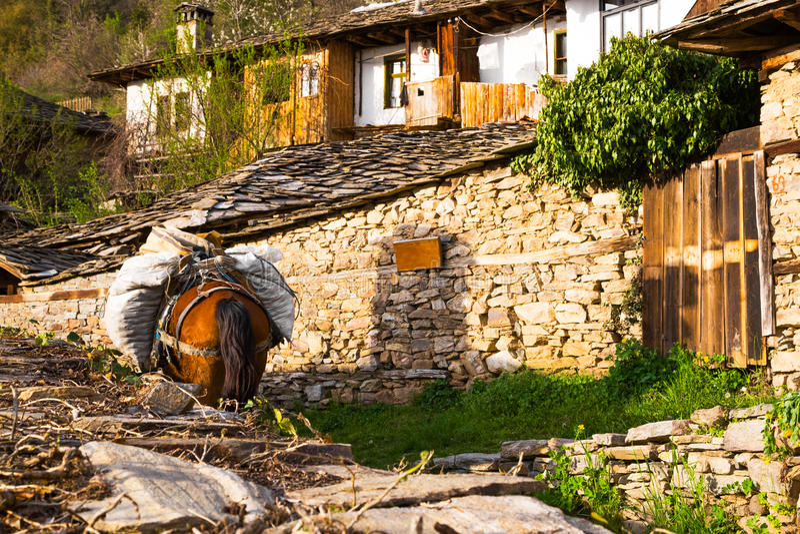 Koński pogrążony z torbami w Leshten wiosce, Bułgaria obrazy royalty free