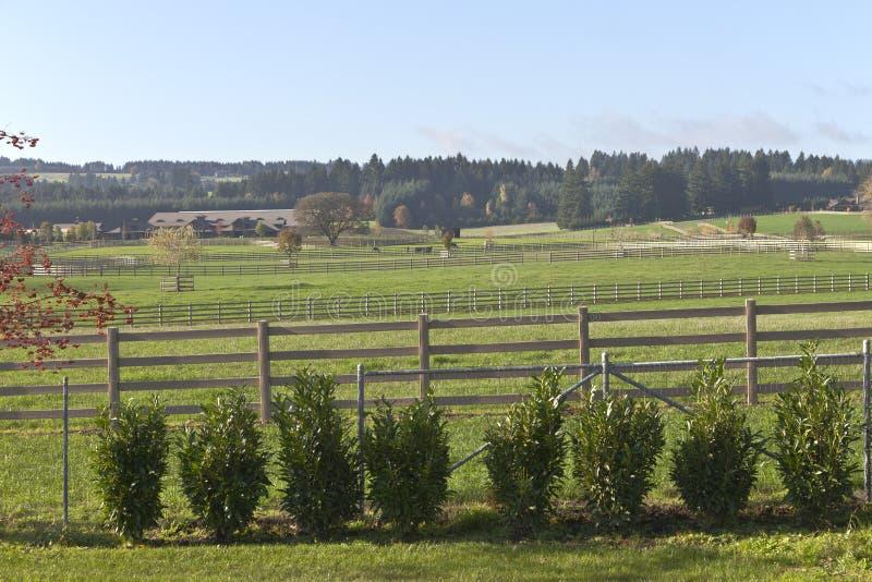 Koński rancho i kraj żyje wiejskiego Oregon zdjęcie stock
