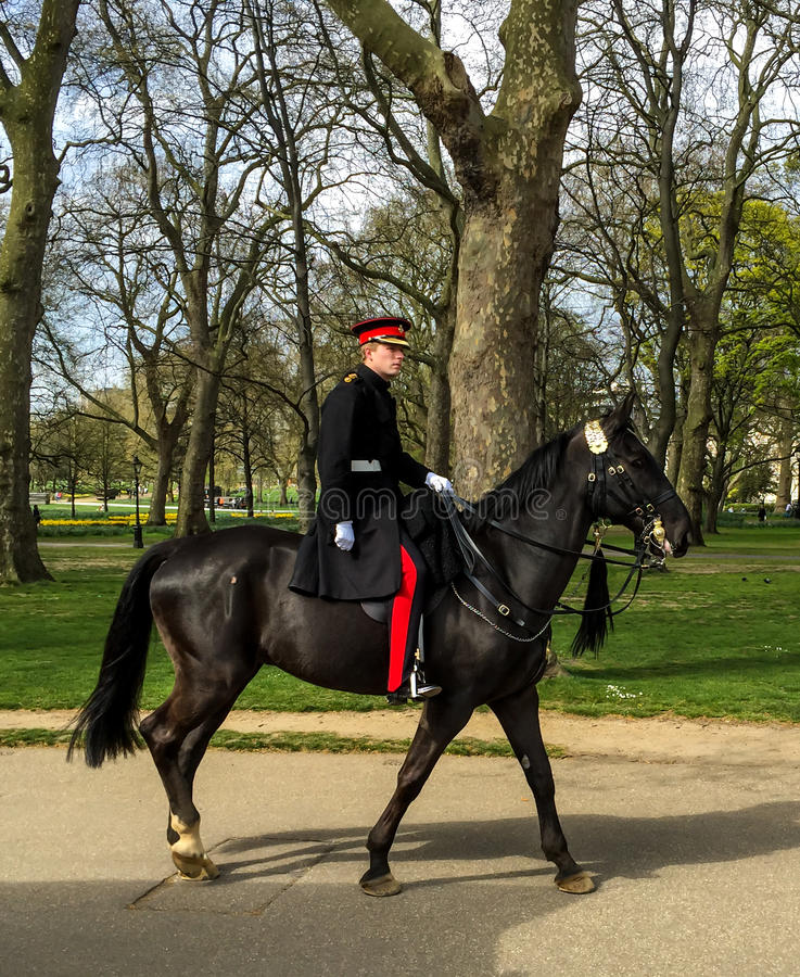 Koński strażnik w zieleń parku blisko pałac buckingham, Londyn, UK obrazy royalty free