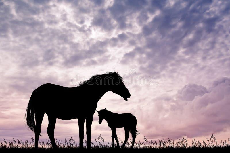 Koński urodzony przy zmierzchem ilustracji
