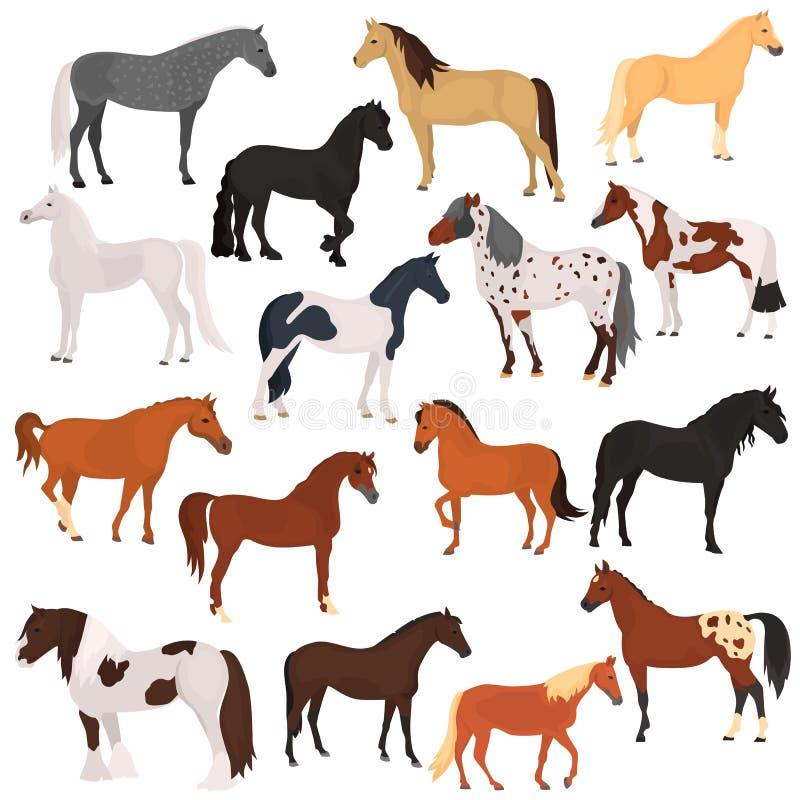 Końskiego trakenu koloru płaskie ikony ustawiać ilustracja wektor