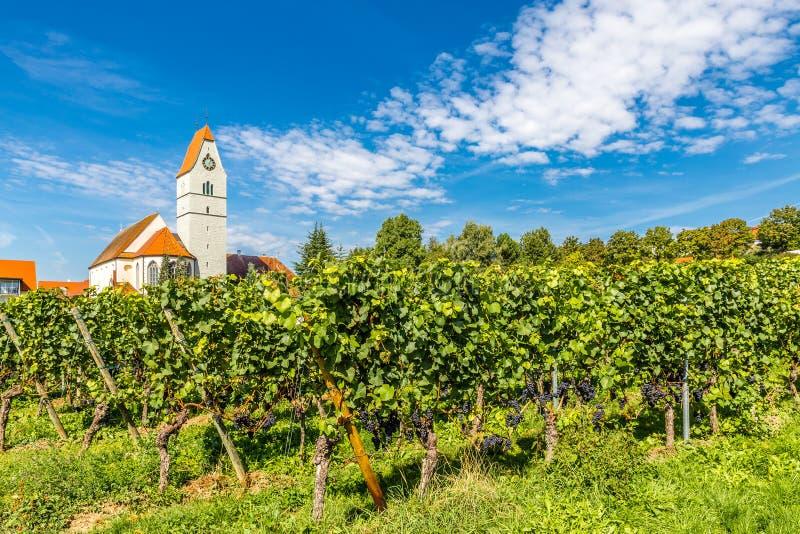 Kościół i winnica, Niemcy, Europa obraz royalty free