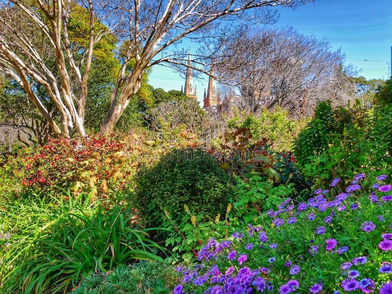 Kościół, kwiatu ogród obraz royalty free