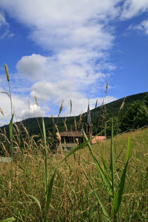 Kościół pole