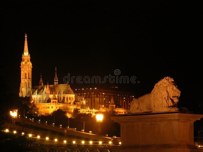 Kościół Rybacy w Bastion i Matthias w nocy w Budapeszcie z lwią figurą na pierwszym planie - Węgry obrazy stock