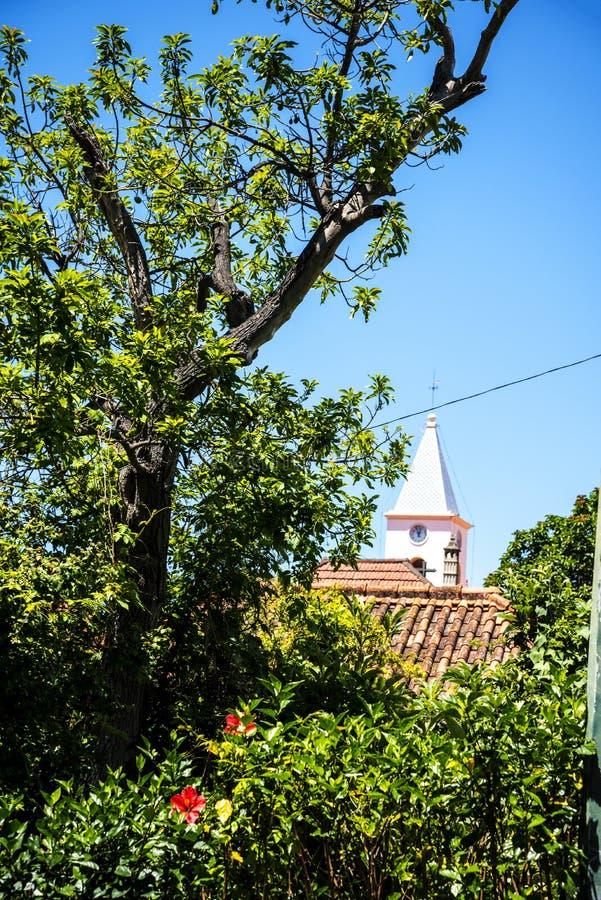 Kościół w Camara De Lobos wioska rybacka blisko miasta Funchal i niektóre wysokie falezy w świacie fotografia royalty free