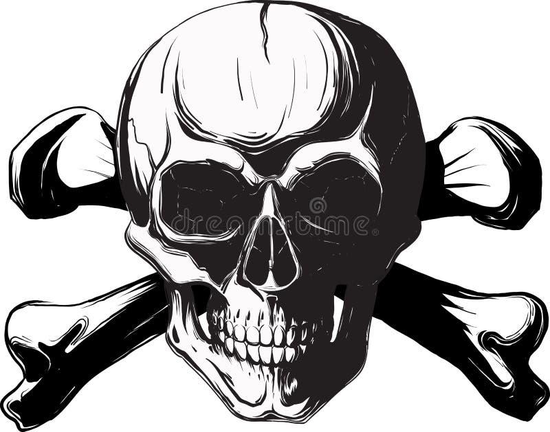 kości istoty ludzkiej czaszka ilustracja wektor