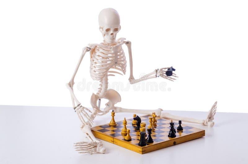 Kościec bawić się szachową grę na bielu fotografia stock