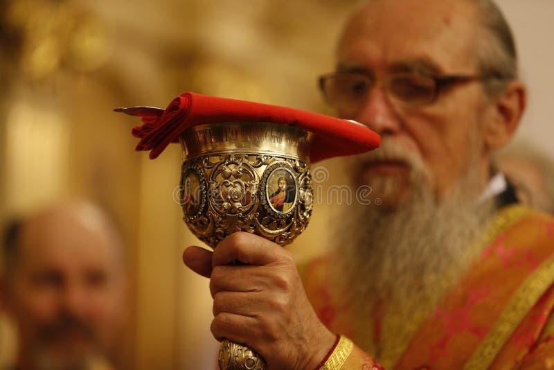 Kościelna filiżanka cześć obrazy royalty free