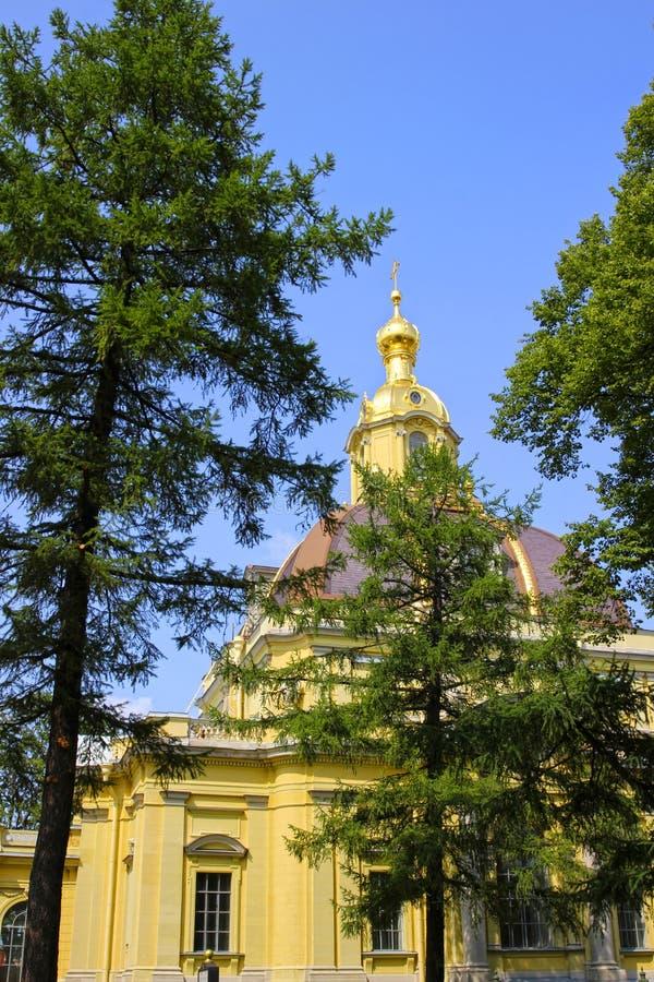 Kościelna iglica w Peter i Paul fortecy w St. Petersburg obrazy royalty free