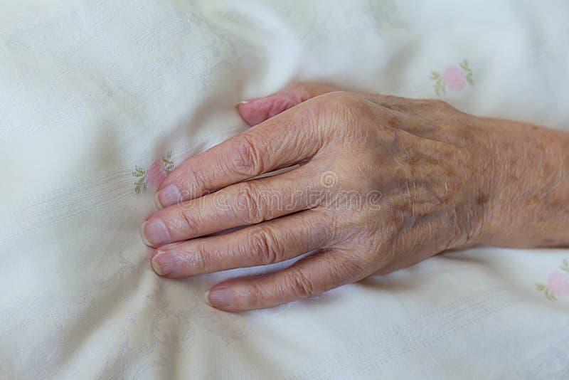 Kościstej ręki stara barwiarska osoba zdjęcie royalty free