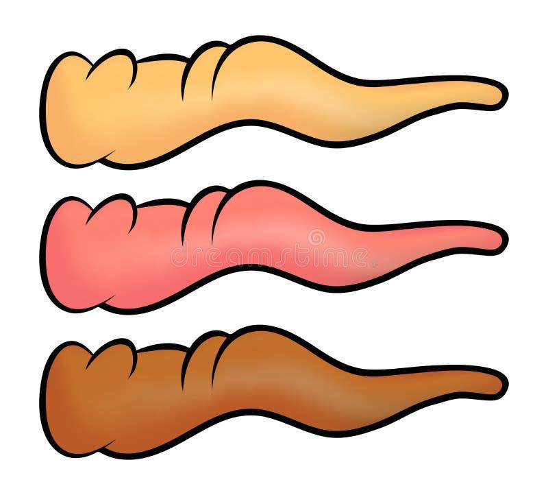 Koślawy kreskówka nos, marchwiany nos dla czarownicy lub bałwan ikona, symbol, projekt Zimy wektorowa ilustracja odizolowywająca  ilustracji