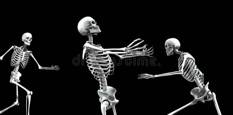 Download Kościec Grupa 4 obraz stock. Obraz złożonej z anatomia - 3799359