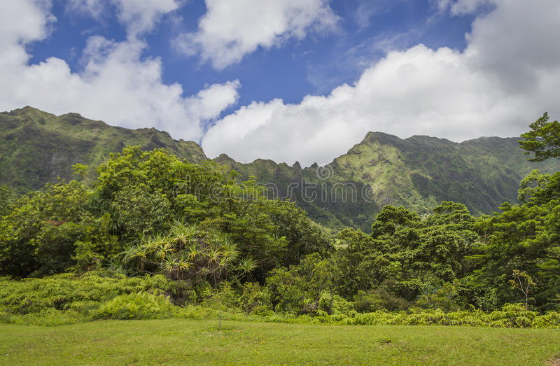 Ko'olau-Berge Oahu Hawaii lizenzfreie stockfotos