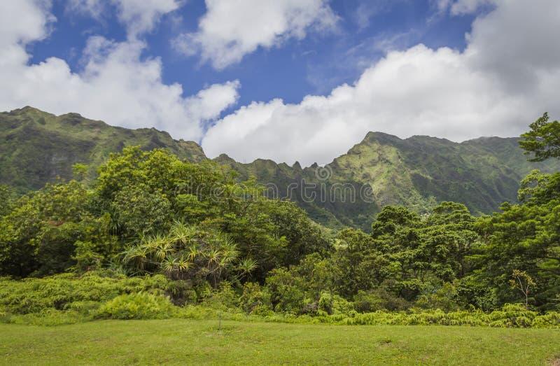 Ko'olau góry Oahu Hawaje zdjęcia royalty free