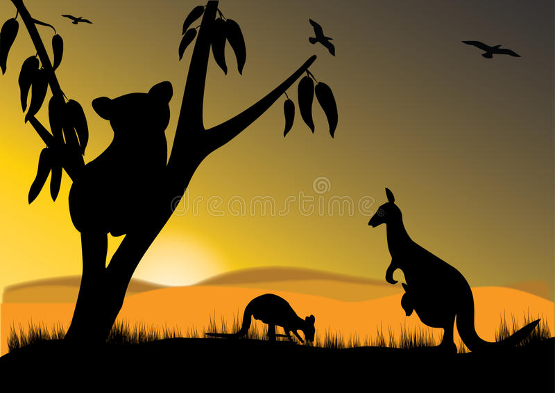 koala καγκουρό ελεύθερη απεικόνιση δικαιώματος