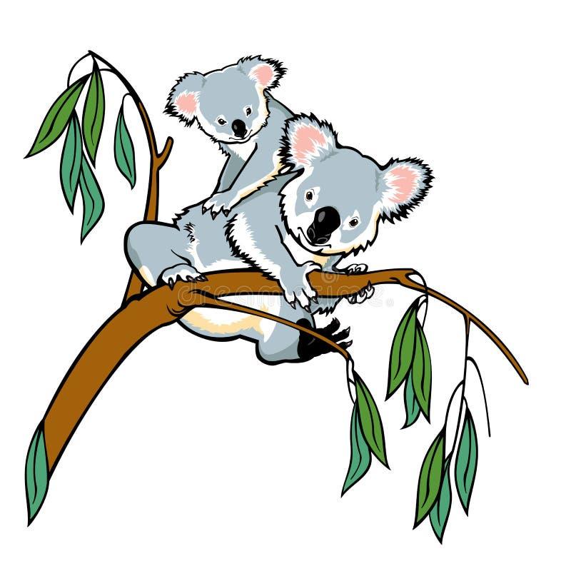 Koala με το joey απεικόνιση αποθεμάτων