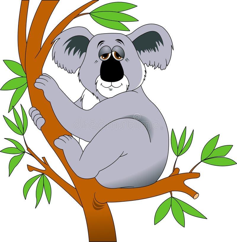 koala vektor illustrationer