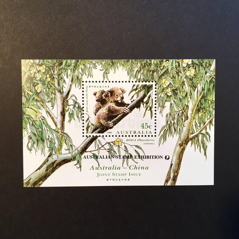 Koala-Australien-Stempel stockbild