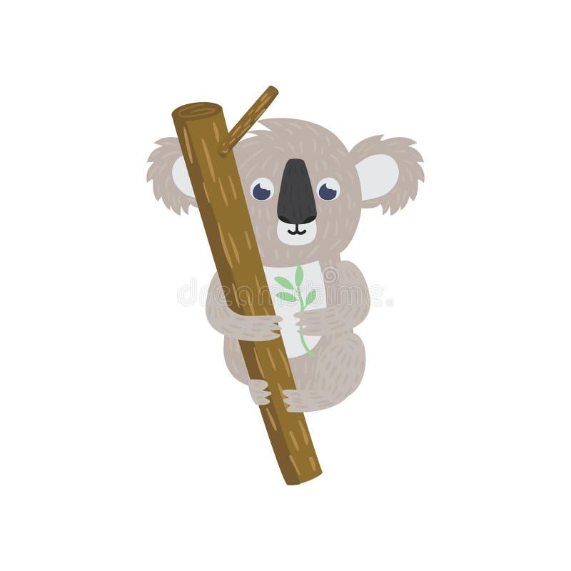 Koala betreffen Baumast Gebürtiges Tier des Eukalyptuswaldlandes Zoo- und Tierkonzept Flacher Charakter der Karikatur lizenzfreie abbildung