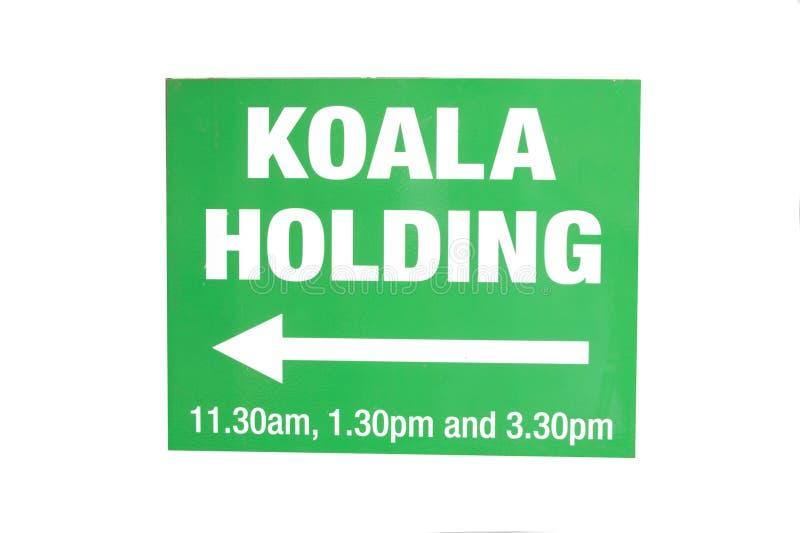 Download Koala Holding Sign stock image. Image of white, isolated - 31795175