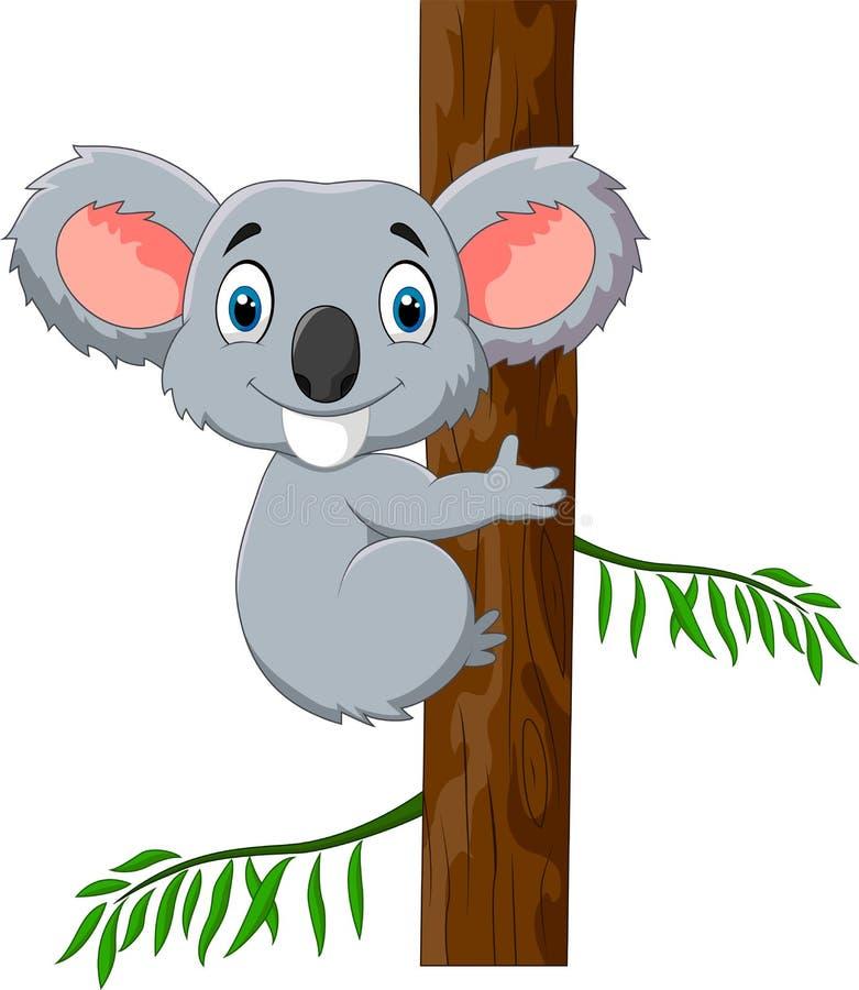 Koala linda en árbol del acacia libre illustration