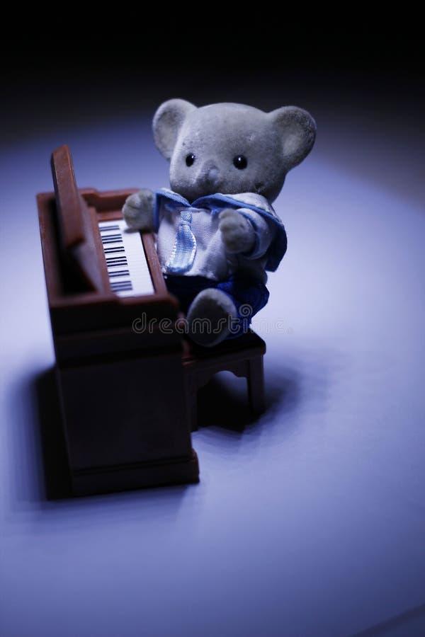 Koala is a pianist royalty free stock photo