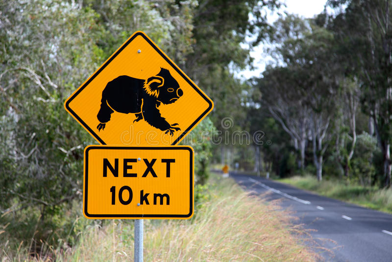 Download Koala sign stock photo. Image of roadway, australia, warning - 15625482