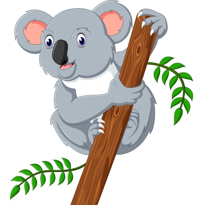 Koala sveglio illustrazione vettoriale
