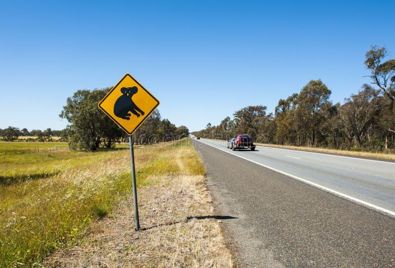 Koalawaarschuwing royalty-vrije stock foto