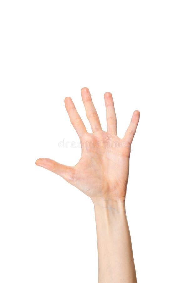Kobieca dłoń pokazująca pięć palców na białym tle obrazy royalty free