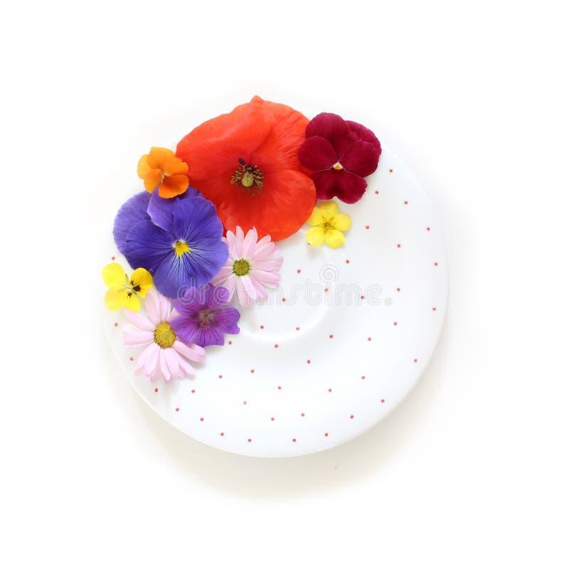 Kobieca kwiecista scena Skład jadalni dzicy i ogrodowi kwiaty, polki kropki porcelany talerz na białym tle obrazy royalty free