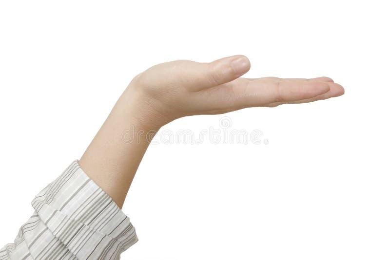 kobieca ręka zdjęcia royalty free
