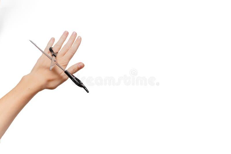 kobiece ręce nożyczki gospodarstwa eurydice zdjęcie stock