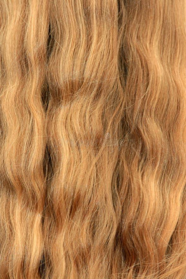 kobiece włosy obraz royalty free