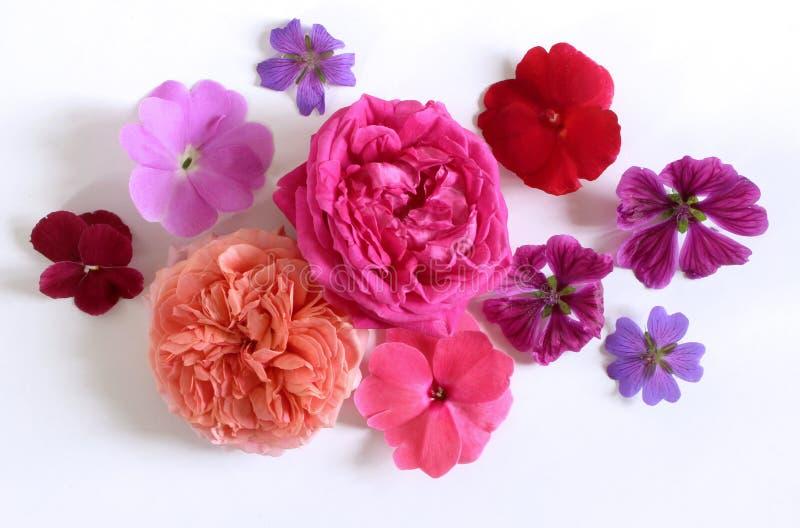 Kobiecy kwiecisty skład Bukiet dzicy i ogrodowi kwiaty Mieszkanie nieatutowy, odgórny widok zdjęcie stock