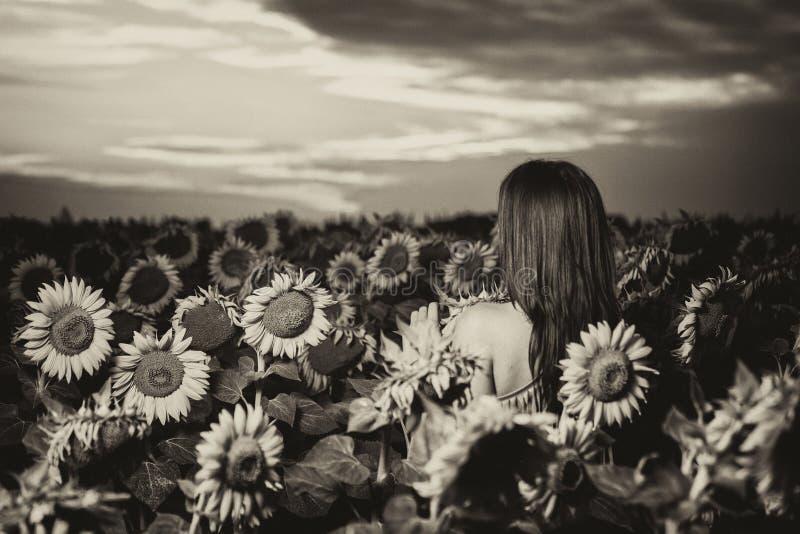 kobiet śródpolni słonecznikowi potomstwa fotografia royalty free