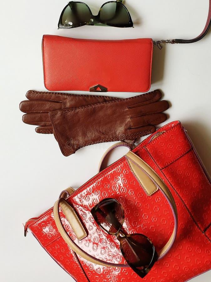 Kobiet akcesoriów Rzemiennych rękawiczek zieleni czerni odzieżowi okulary przeciwsłoneczni projektują czerwonego kiesa portfla to zdjęcia stock