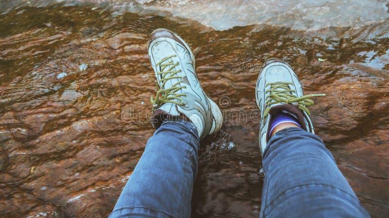 Kobiet nóg wearshoes chodzą w lasowej brodzenie wodzie obraz royalty free