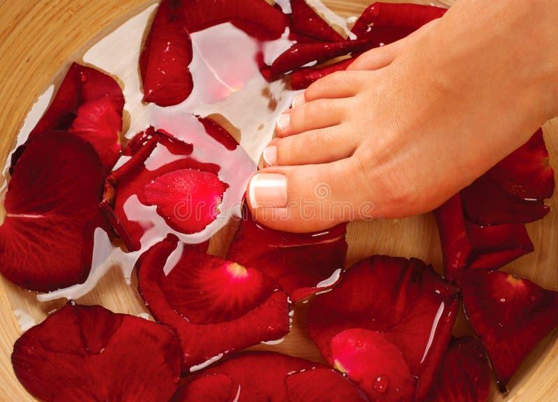 Kobiet nogi w wodzie z różanymi płatkami fotografia stock