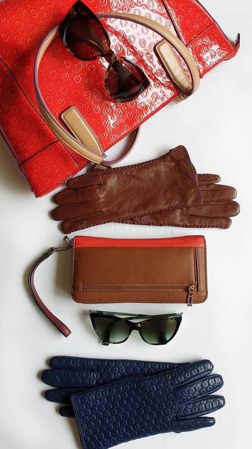 Kobiet odzieżowych akcesoriów Rzemienne rękawiczki zielenieją czarnego sunglass kiesy czerwonego portfla Błękitnych Białych cajgi obraz royalty free
