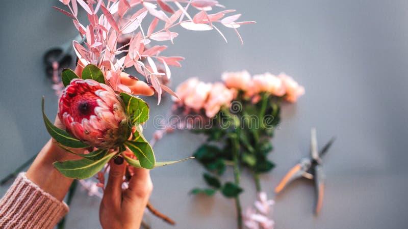 Kobiet ręk chwyta piękny czerwony kwiat i frond Róże kłama wraz z nippers na popielatym tle obrazy royalty free