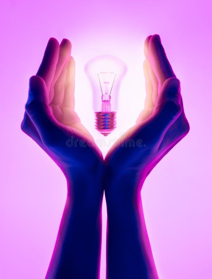Kobiet ręki i trzymać świecącą żarówkę Elektryczna płonąca żarówka w ręce na purpurowym tle Inspiracja pomysłów przeciw obraz stock