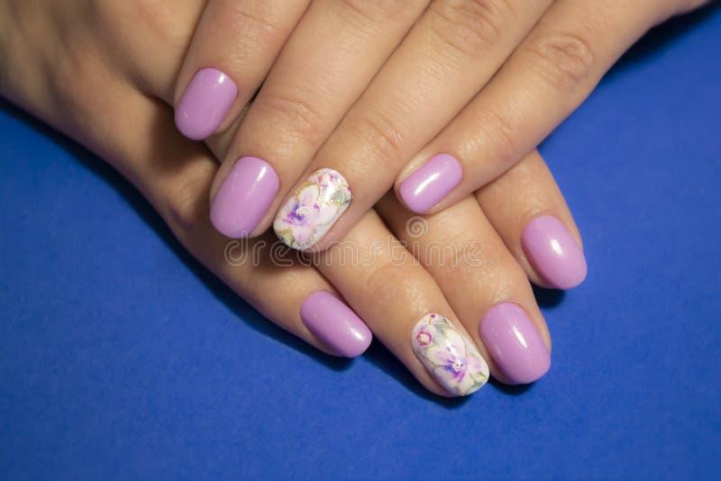 Kobiet ręki z manicure'em na błękitnym tle Zbliżenie fotografia zdjęcie royalty free