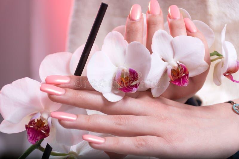 Kobiet ręki z różowym wiosna manicure'em na gwoździach trzyma białe orchidee kwitną w rękach w piękno salonie obraz royalty free