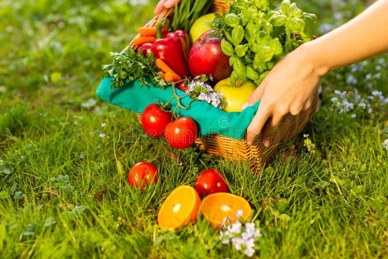 Kobiet r?ki trzyma ?ozinowego kosz z warzywami i owoc, zako?czenie w g?r? zdjęcia royalty free