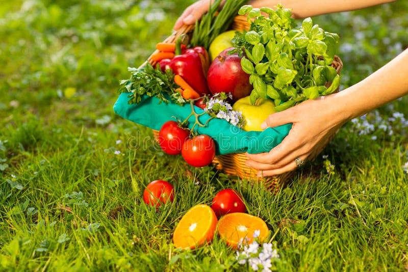 Kobiet r?ki trzyma ?ozinowego kosz z warzywami i owoc, zako?czenie w g?r? obraz stock